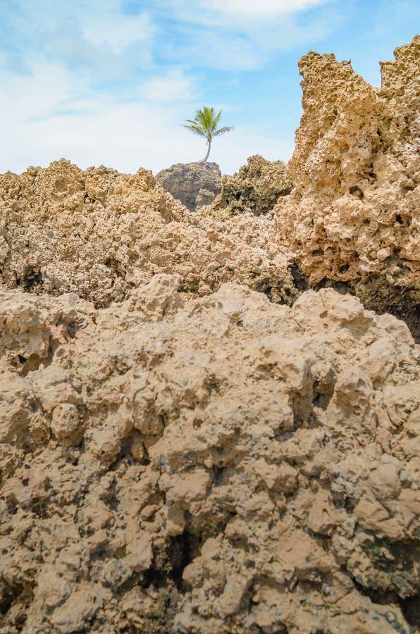 Rockowe formacje Tambaba plaża zdjęcia stock