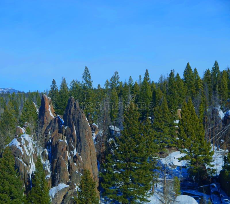 Rockowe iglicy i jedlinowi drzewa zdjęcia stock