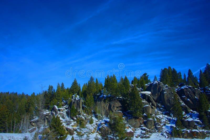 Rockowe iglicy i jedlinowi drzewa obrazy stock