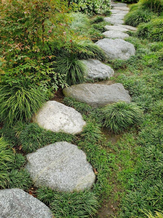 Rockowy aleja projekt w Japońskim przyjaźń ogródu balboa parku San Diego zdjęcia royalty free