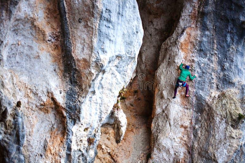 Rockowy arywista na skale obrazy stock