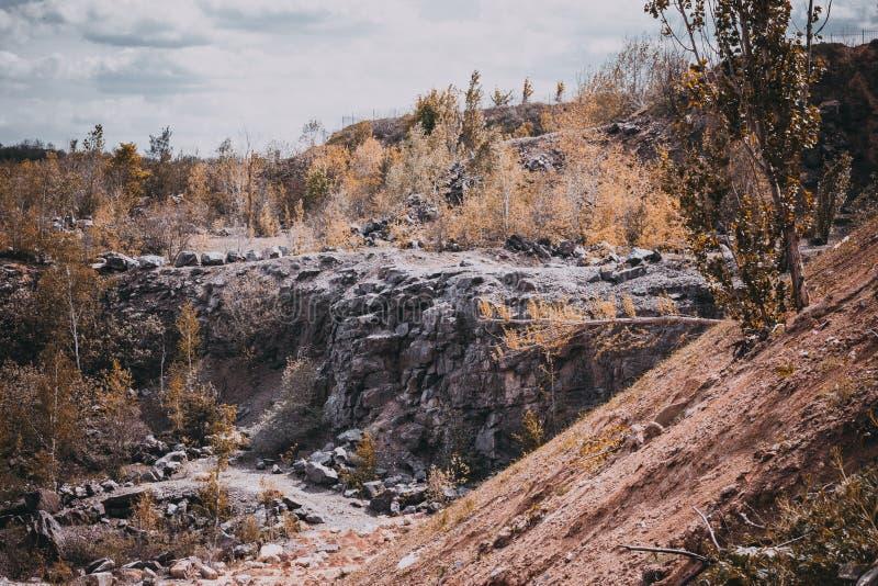 Rockowy las zdjęcie stock