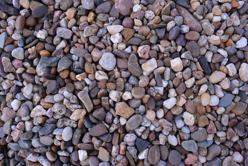 Rockowy ogród obrazy stock