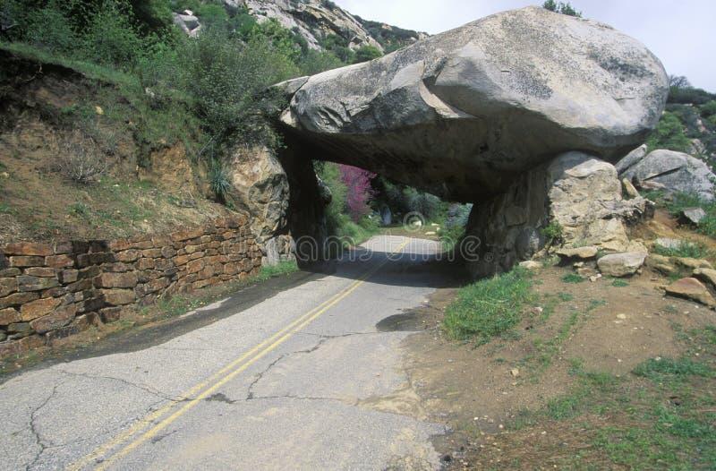 Rockowy tunel, sekwoja park narodowy, Kalifornia zdjęcie stock
