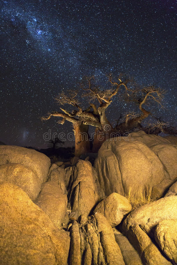 Rocks baobab trees and the milkyway stock images