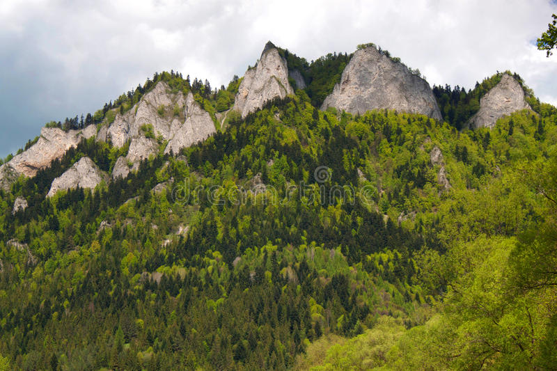 Rocks called Seven monks. In the Pieniny National Park in Slovakia. On the river Dunajec stock photos