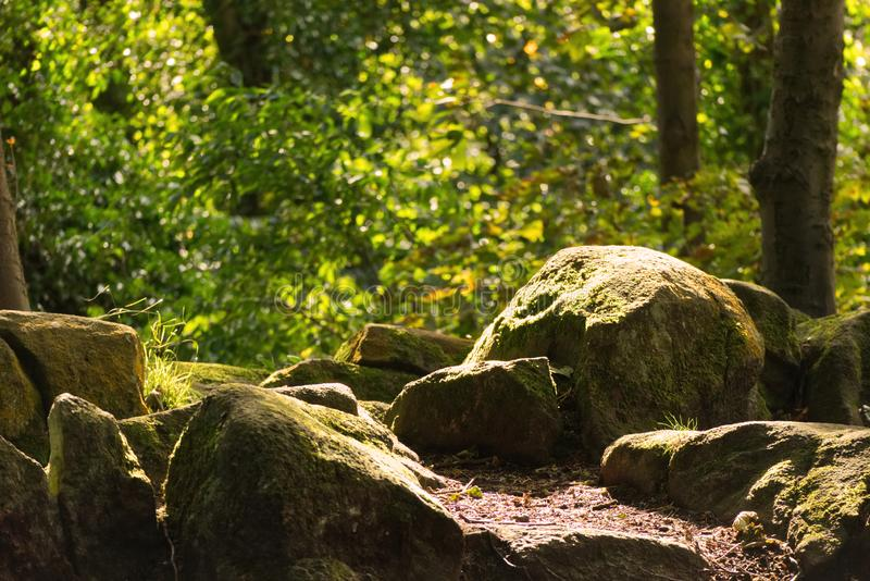 Rocks covered in moss shining in the sun royalty free stock photo