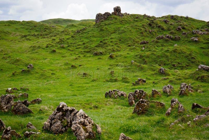 Rocks on the grass on mountain top austrian alps stock photos