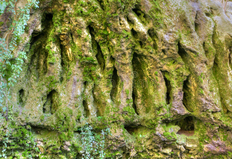 Rocks and moss royalty free stock photo