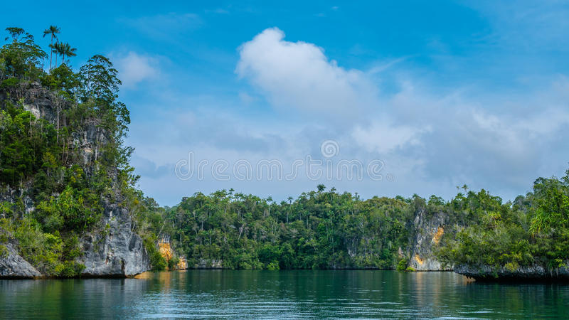Rocks overgrown with Palmtrees in Hidden Bay on Gam Island near Kabui and Passage. West Papuan, Raja Ampat, Indonesia. Rocks overgrown with Palmtrees in Hidden stock photography