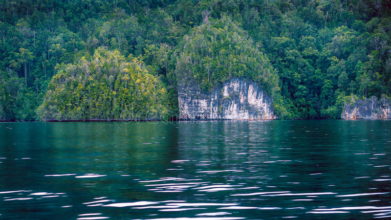 Rocks overgrown with Palmtrees in Hidden Bay on Gam Island near Kabui and Passage. West Papuan, Raja Ampat, Indonesia. Rocks overgrown with Palmtrees in Hidden royalty free stock photography