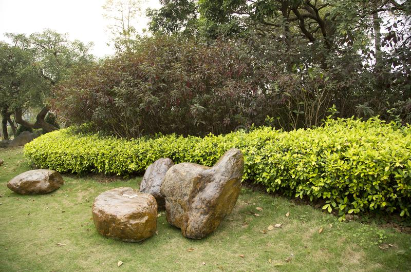 Rocks, plants arranged in spring park. Rocks and plants arranged in spring park, Nanning city China royalty free stock photo
