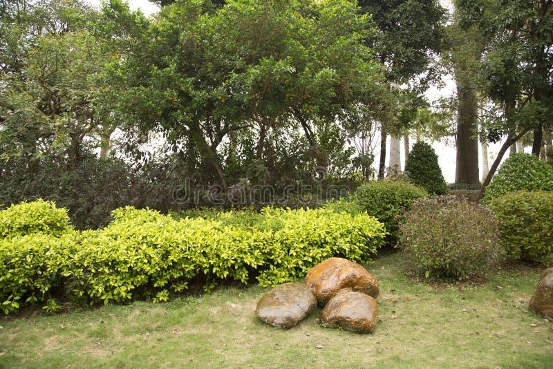 Rocks, plants arranged in spring park background. Rocks and plants arranged in spring park, Nanning city China stock photos