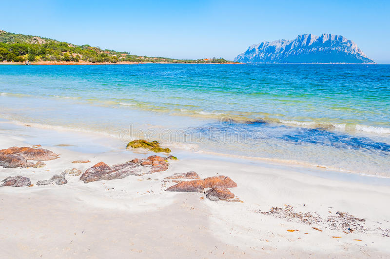 Rocks and sand in Porto Istana beach. With Tavolara island on the background, Sardinia stock photography