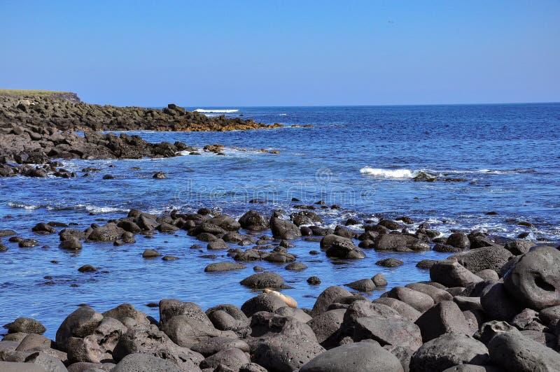 Rocks, sea and sun on the Galapagos Islands, Ecuador. Rocks, sea and sun and sky in the Galapagos Islands, Ecuador royalty free stock images