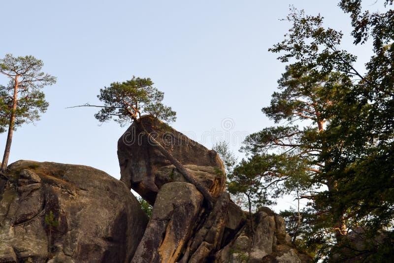 Rocks, sky, mountains an forest. Carpathian mountains. Ukraine royalty free stock photography