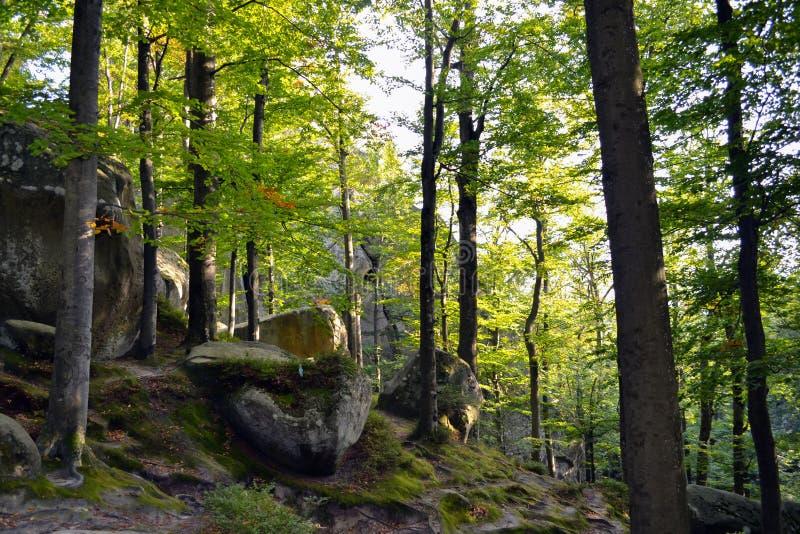 Rocks, sky, mountains an forest. Carpathian mountains. Ukraine stock photo