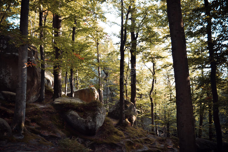 Rocks, sky, mountains an forest. Carpathian mountains. Ukraine stock photography