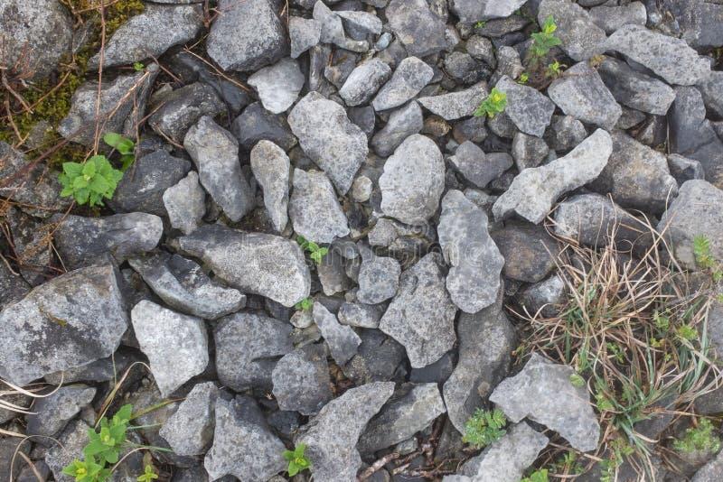 Rocks stones gravel pattern texture, raw land. And vegetation royalty free stock image