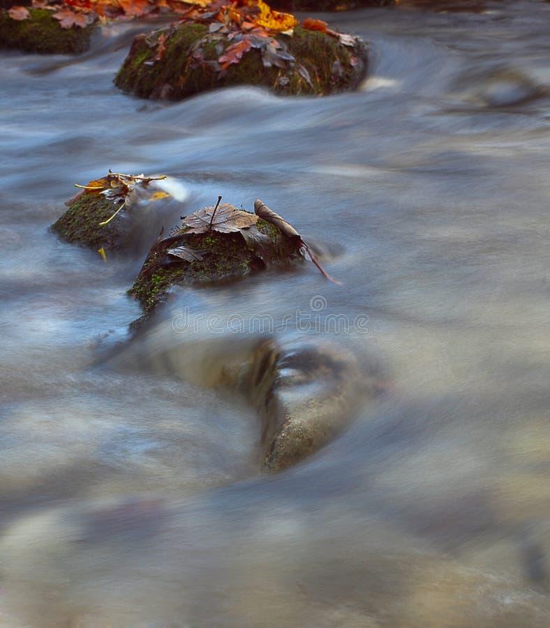 Rocks in a stream royalty free stock photos