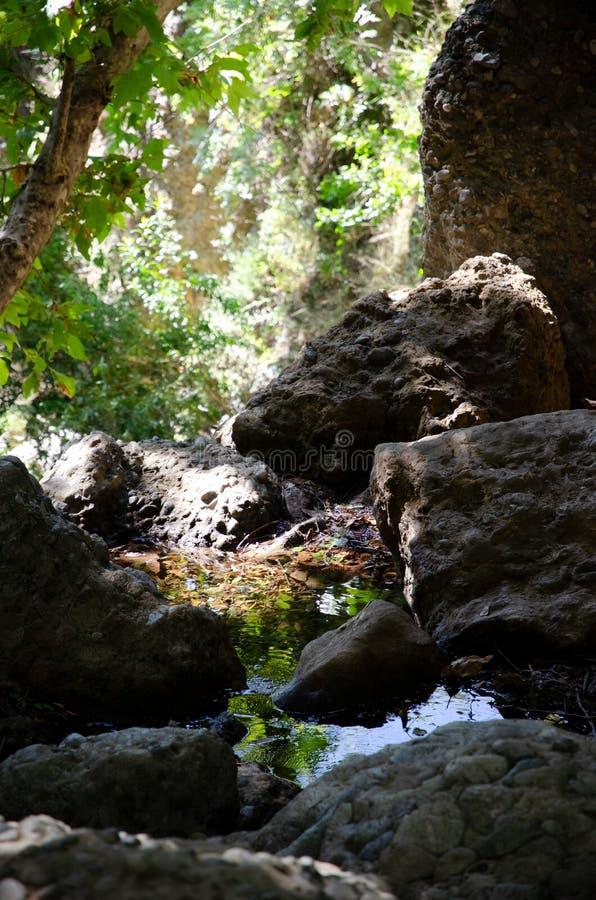 Rocks and Green Stream stock photos