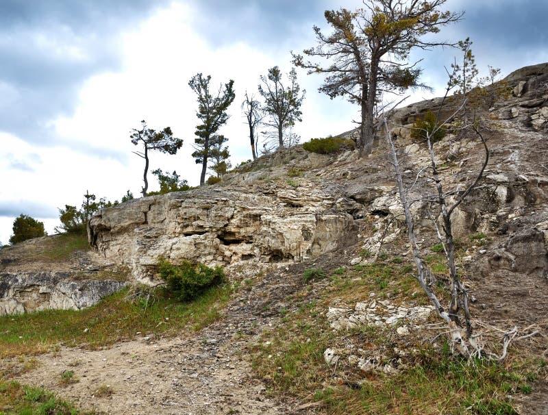 Rocks and trees royalty free stock photo