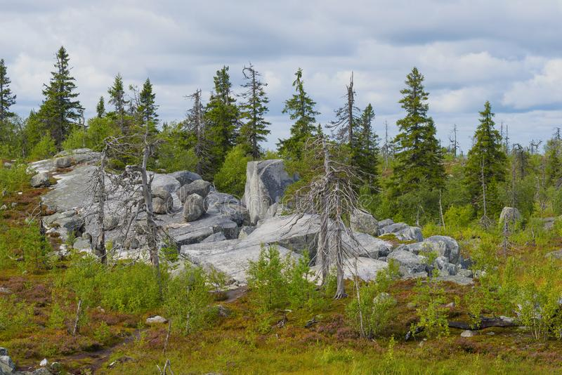 Rocks of Vottovaara mountain. Karelia. Russia royalty free stock photos