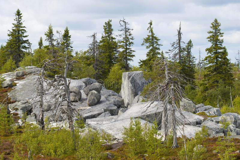Rocks of Vottovaara mountain. Karelia. Russia. Rocks of Vottovaara mountain. Karelia, Russia stock photos