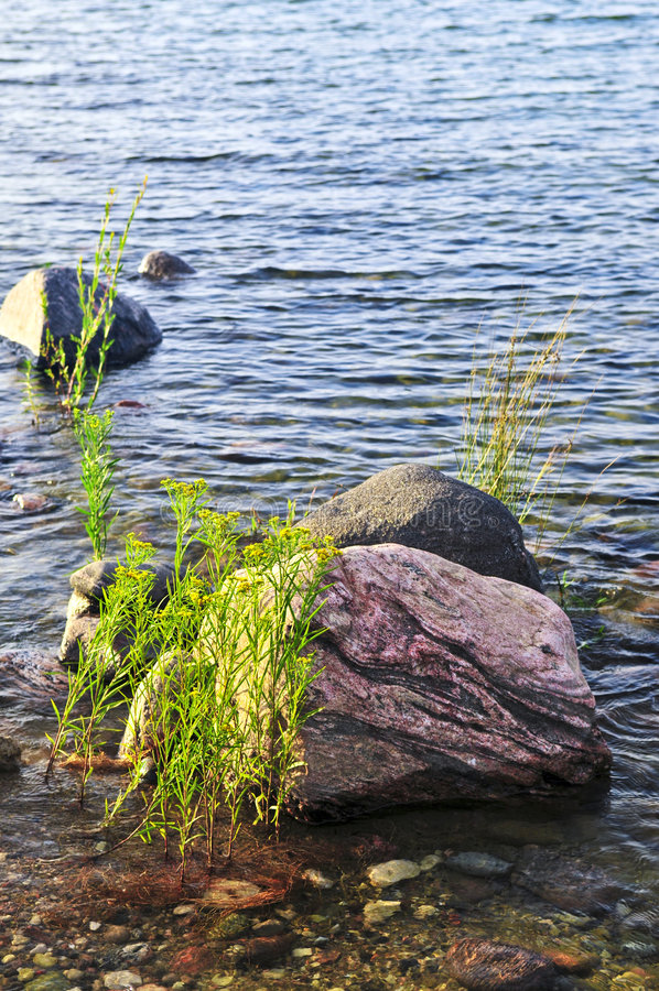 Download Rocks in water stock photo. Image of clear, lakeshore - 7079536
