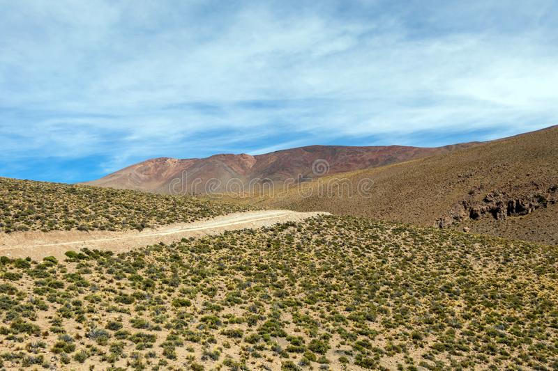 Desert landscapes with mountains in Bolivia at the dry season, dry vegetation is a natural background. Rocky and arid mountain landscape : Desert valley with royalty free stock photos
