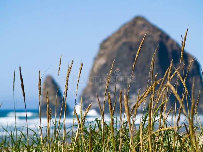 Rocky Beach áspero foto de stock