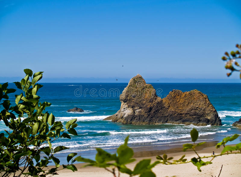 Rocky Beach áspero fotografia de stock