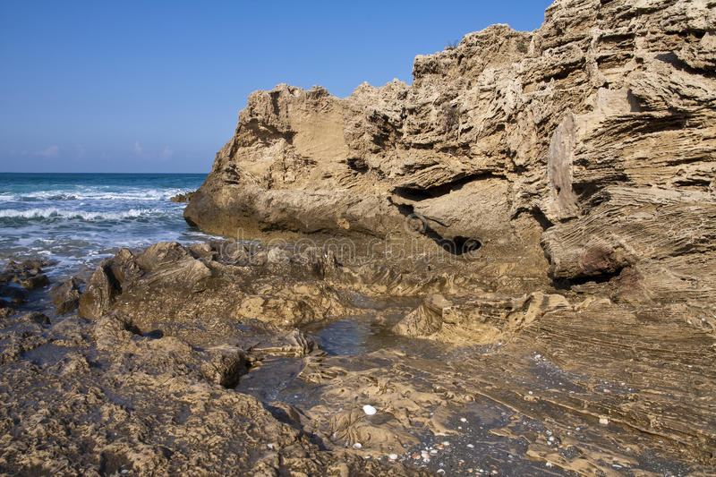 Download Rocky beach stock image. Image of shell, waves, rock - 12065369