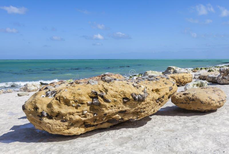 Rocky Beach Abstract lizenzfreies stockfoto