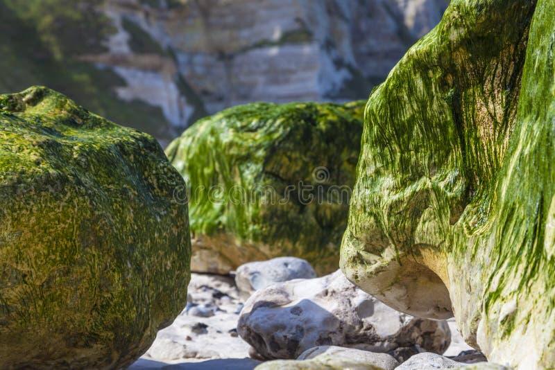 Rocky Beach - abstraktes Detail stockfotos