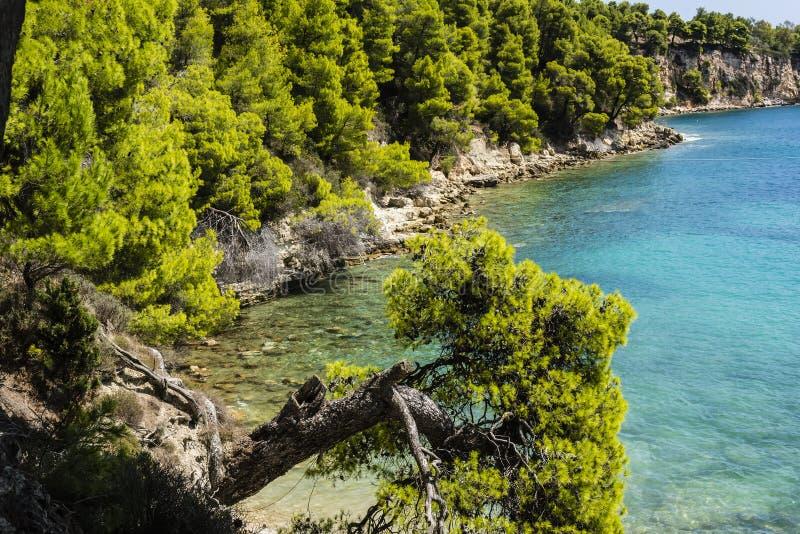 Rocky Beach of alonissos, Greece stock photos