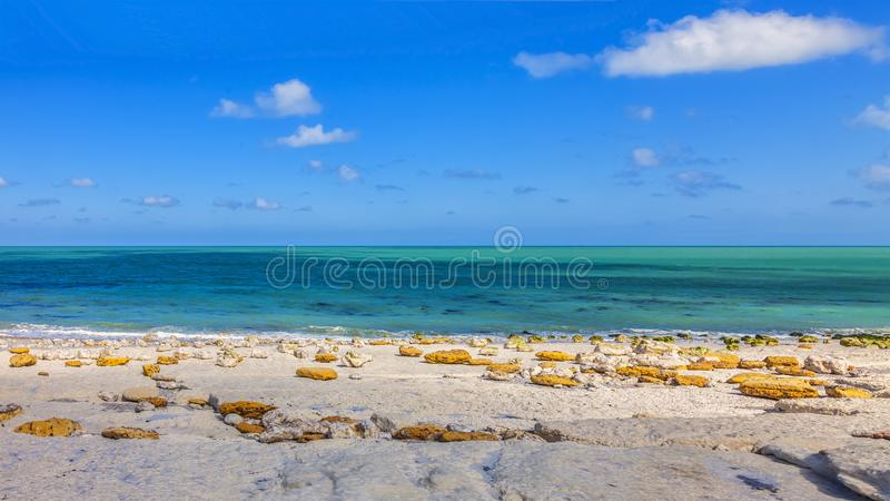 Rocky Beach in Normandië royalty-vrije stock foto