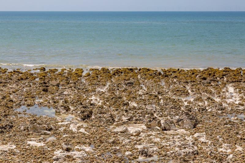 Rocky Beach près de Brighton dans le Sussex photo libre de droits