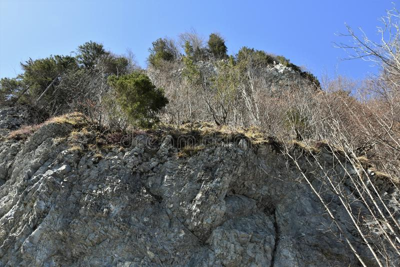 Rocky cliff of Alps overgrown with trees near of Klöntalersee lake royalty free stock photos