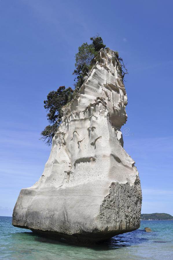 Cathedral Cove Rock  in New Zealand stock photography