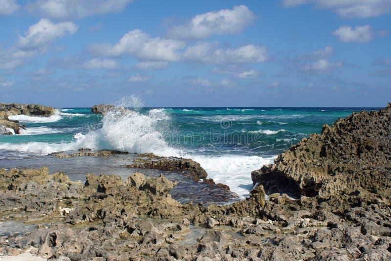 Rocky coast in Cozumel royalty free stock photos