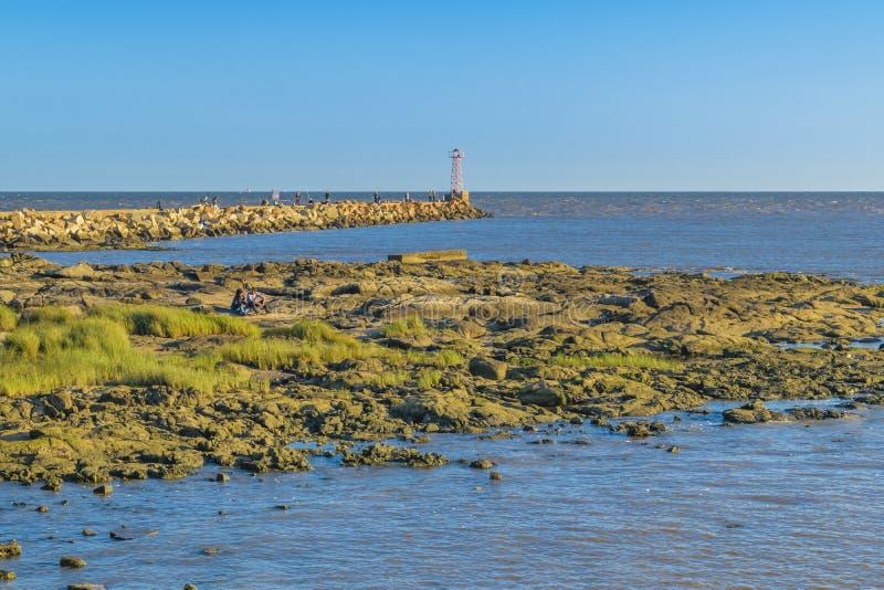 Rocky Coastal Scene Montevideo, Uruguay royaltyfri bild