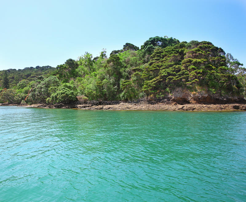 Rocky coastline, Russell, Bay of Islands, New Zealand.  stock images