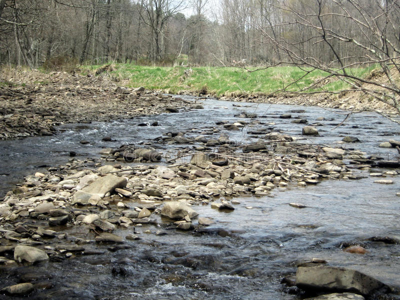 rocky creek zdjęcie royalty free