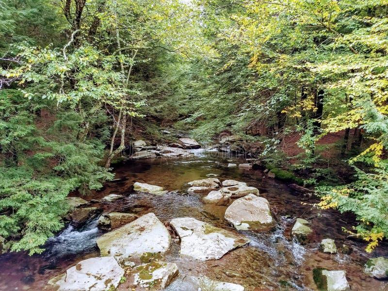 Rocky Creek en Nueva York foto de archivo libre de regalías