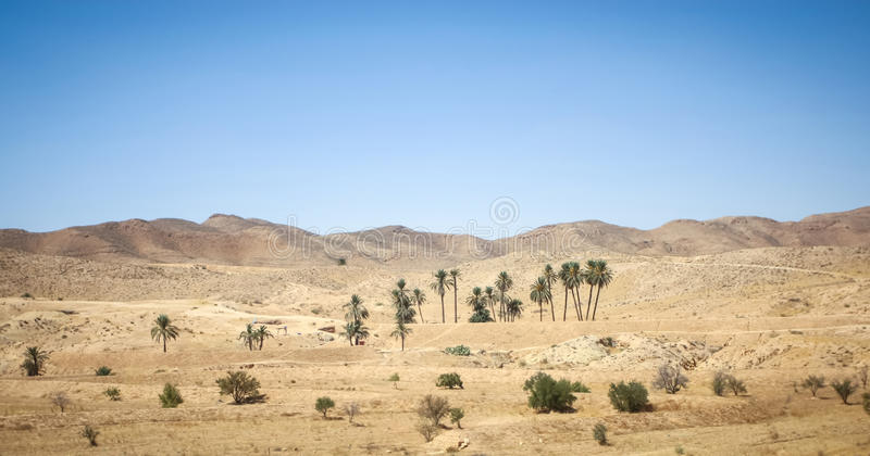 Rocky desert of Sahara. Rocky desert at the beginning of Sahara in the middle of Tunisia royalty free stock images