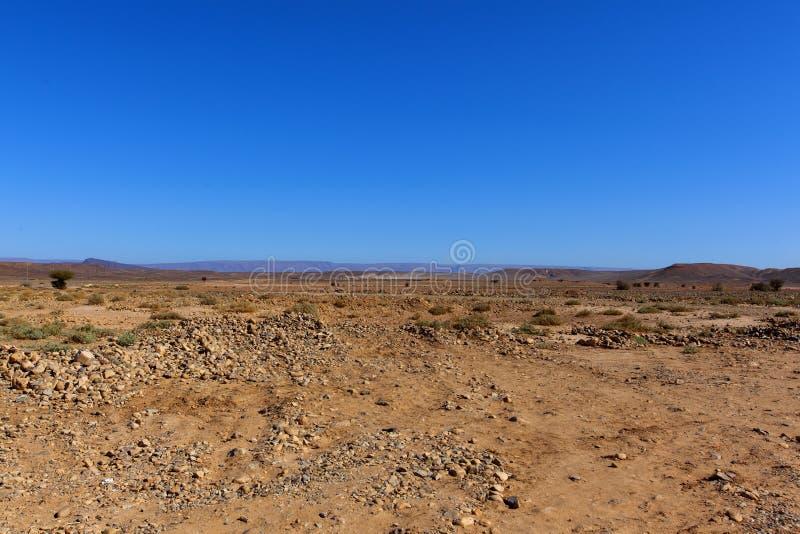 Rocky desert, scenic desert landscape in Morocco,. Assa-zag, moroccan rocky desert landscape with plants and mountain range stock image