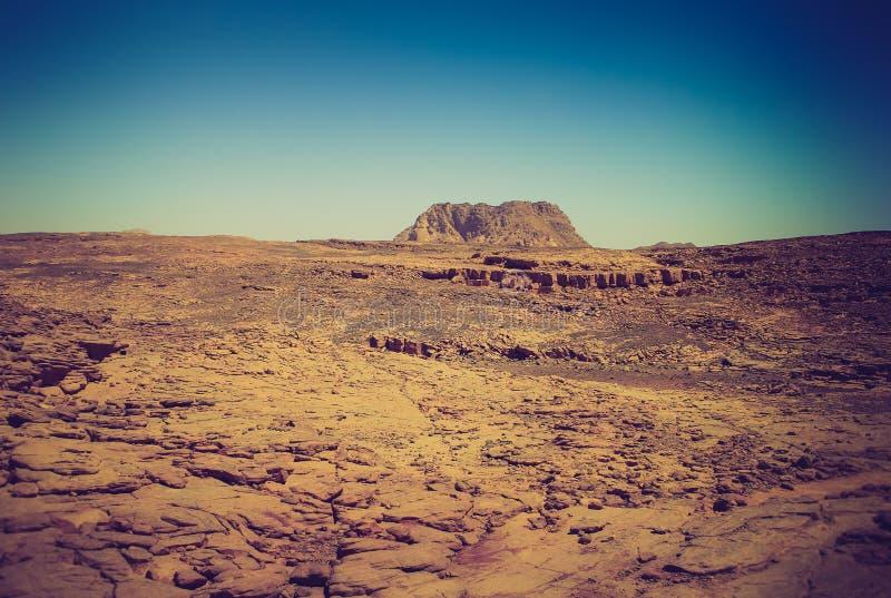 Rocky desert, the Sinai Peninsula, Egypt. royalty free stock photography