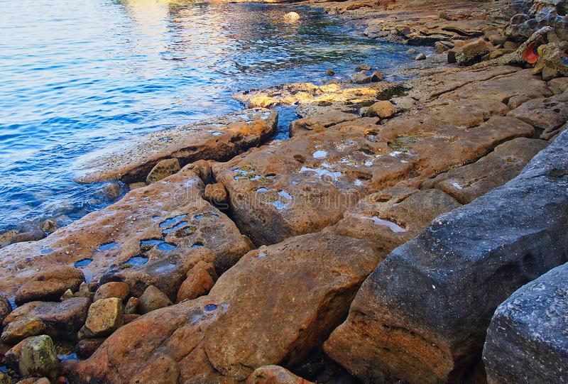 Rocky Foreshore Sydney hamn, Australien royaltyfri foto
