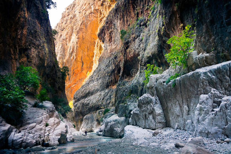 Rocky gorge and mountain stream royalty free stock images